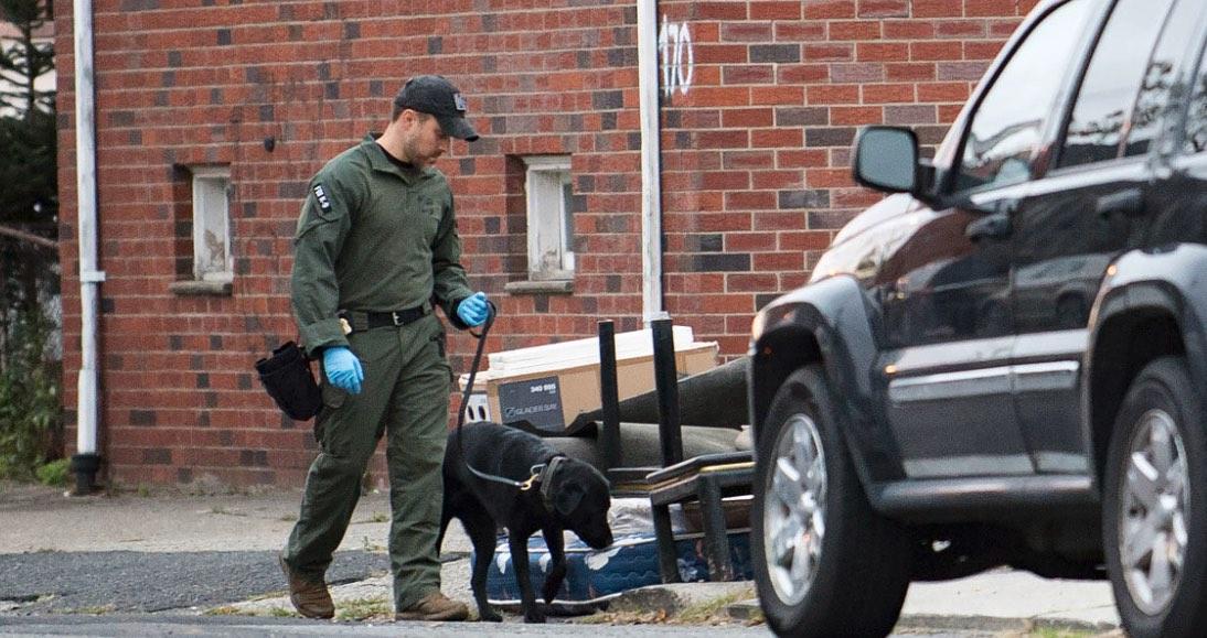 Terrorismo, Estados Unidos, Nueva York