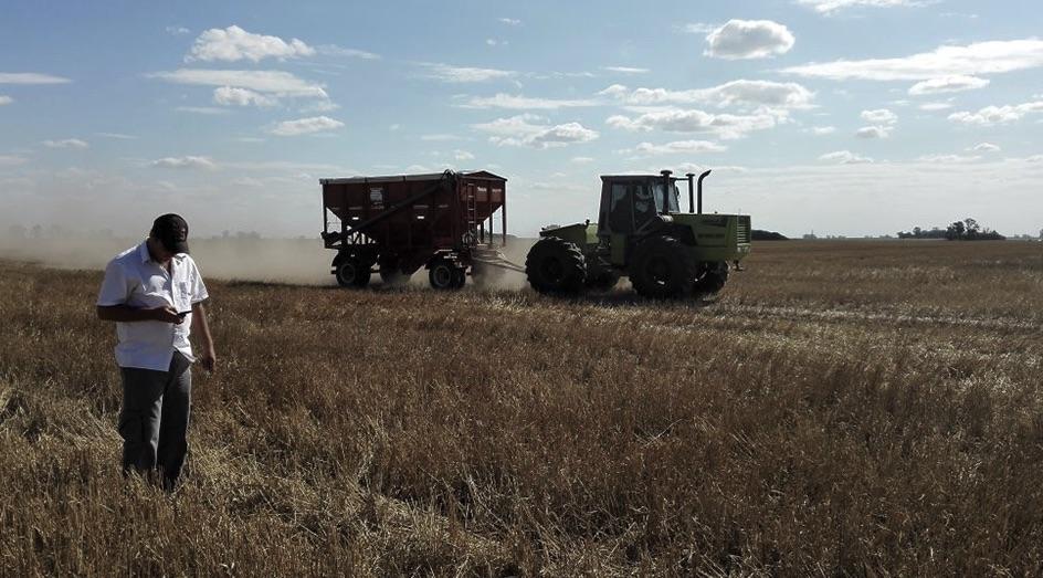 Campo argentino, Productores agropecuarios