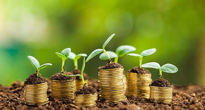 Economía y crecimiento