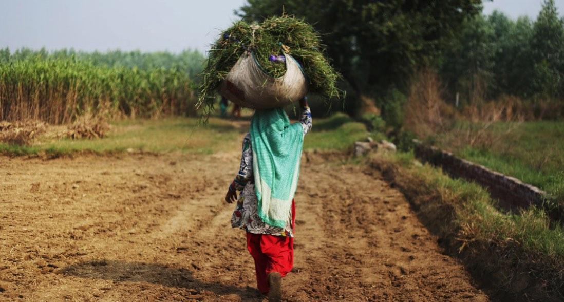 Pobreza, campo, Africa