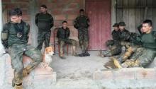 Colombia, Soldados secuestrados por indígenas, Guardias indígenas
